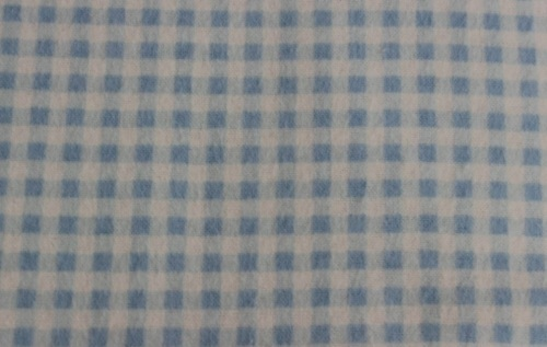 Blue & White Gingham Flannel